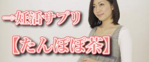 妊活サプリメント たんぽぽ茶