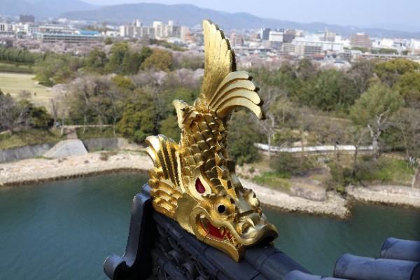 【妊活のジンクス】妊活中の女性に人気の愛知県の妊活神社