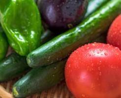 妊活中の夏野菜